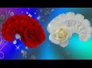 С Днем рождения женщине Музыкальное поздравление Красивая видео открытка