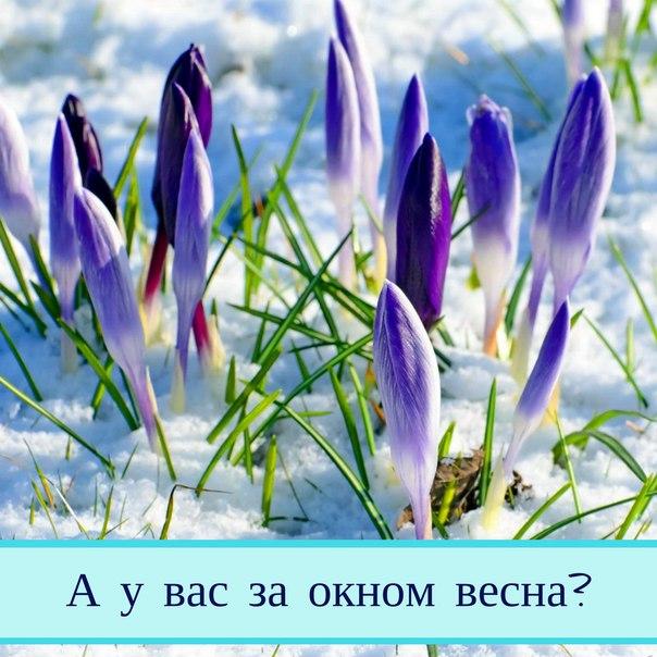 одном картинки дожить до весны мать учит