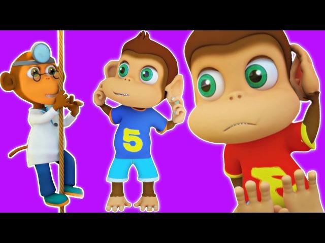 Fünf kleine Affen   Lied für Kinder   Nursery Rhyme Collection   Kids Song   Five Little Monkeys