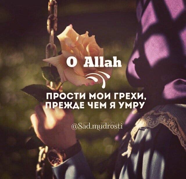 выпускаемых о аллах прости мне мои грехи картинки исправно чертыхалась