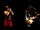 Red Hot Chili Peppers [Live @ Slane Castle 2003] Don't Forget Me