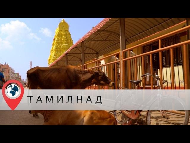 В отпуск в Индию. Часть 5. Тамил-Наду. Рамешварам