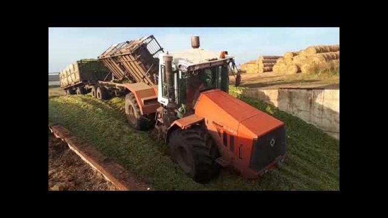 Уборка кукурузы Комбаин Нью Холланд трактора К 744р3 и К 701
