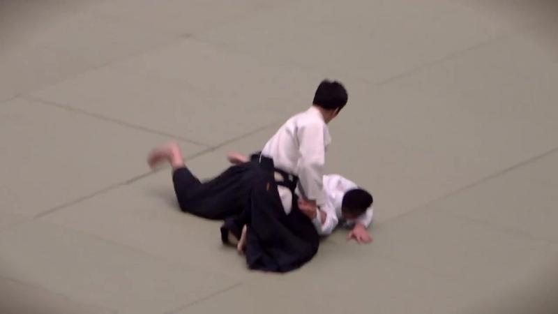 Mitsuteru Ueshiba Waka Sensei Embu, 55th All Japan Aikido Embukai, 2017