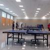 Настольный теннис в Колтушах