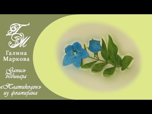 Маркова Галина. Платикодон из фоамирана