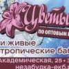 ЦВЕТЫ И БАБОЧКИ.Доставка.Екатеринбург.