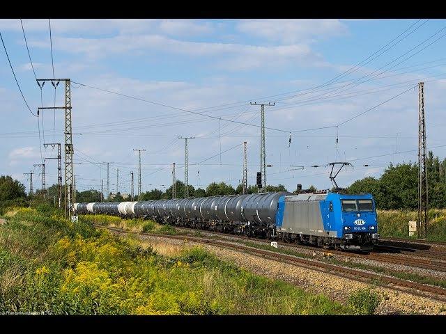 Güterverkehr in Großkorbetha HVLE Maxima Rheincargo CTL SBB Cargo uvm