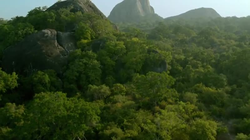 Дикая Шри Ланка Wild Sri Lanka 2015