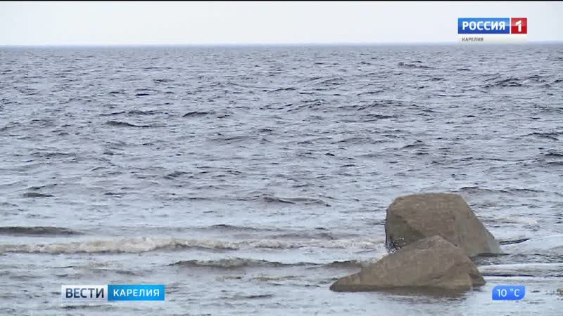 В Петрозаводске обсудили стратегию развития российской Арктики