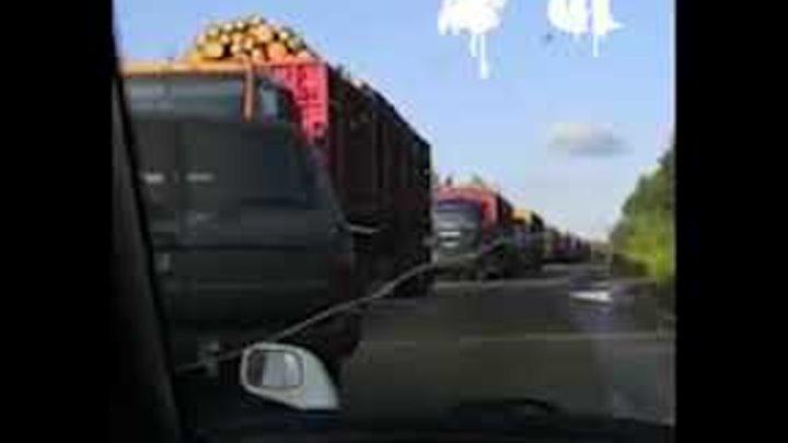 Мужчины перекрыли проезд чтобы выяснить почему леса горят а деревья увозят в Китай