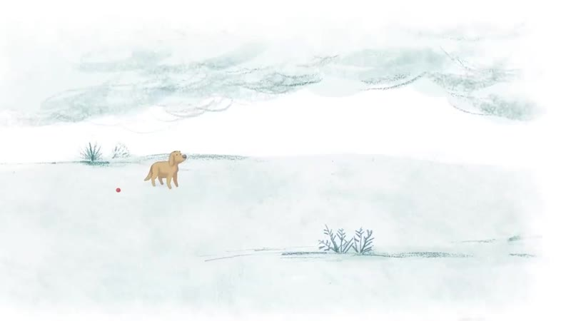 Heartwarming animation of a dog's rescue story Billie by Maki Yoshikura Shor
