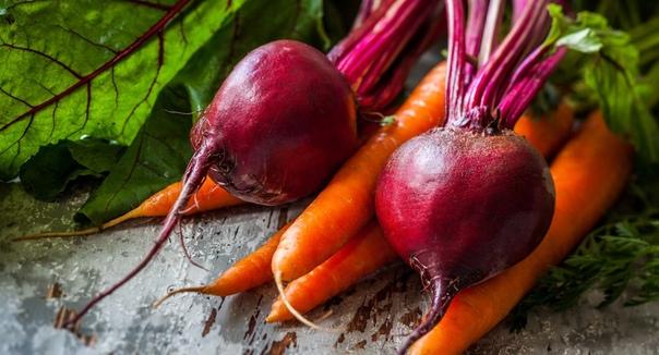 Подзимние посевы Подзимние посевы корнеплодов (морковь, свекла, редис, сельдерей) и зеленных культур (укроп, петрушка, салат, пекинская капуста) проводят во второй половине октября-начале ноября
