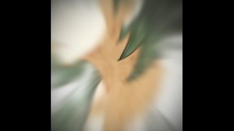 Danganronpa Zero/DR0 Yasuke Matsuda||AMV