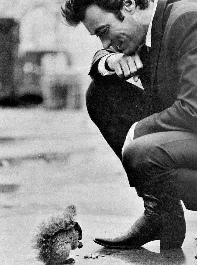Клинт Иствуд и белочка, 1968 год.