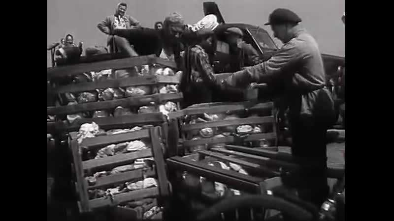 Мы, двое мужчин (1962) Экранизация рассказа А.В.Кузнецова Юрка, бесштанная команда.