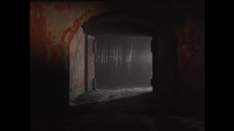 Жизнь и смерть Лёньки Пантелеева 8 серия 2006г