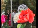 Цветочное королевство в парке