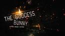 The Goddess Bunny - Гаддесс Банни\\ Жуткое видео с Ютуба\\ Не для слабонервных\\