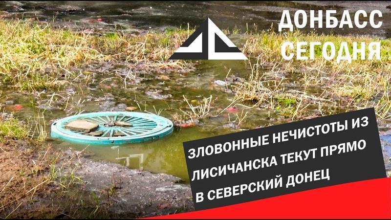 Зловонные нечистоты из Лисичанска текут прямо в Северский Донец