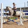 Конный спорт-Верховая езда-Иппотерапия-Тверь