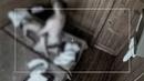 Брачное чтиво Вакханалия в командировке ДТВ