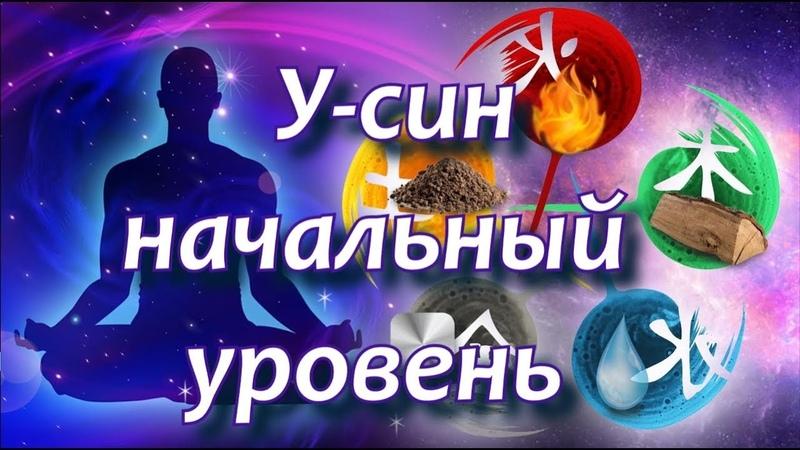 🌀У син система взаимодействия пяти основных органов