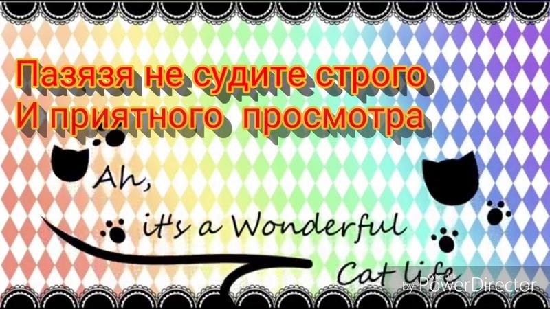 Ах эта прекрасная кошачья жизнь эррор и инк