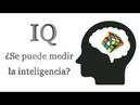 ¿Se puede medir realmente la inteligencia