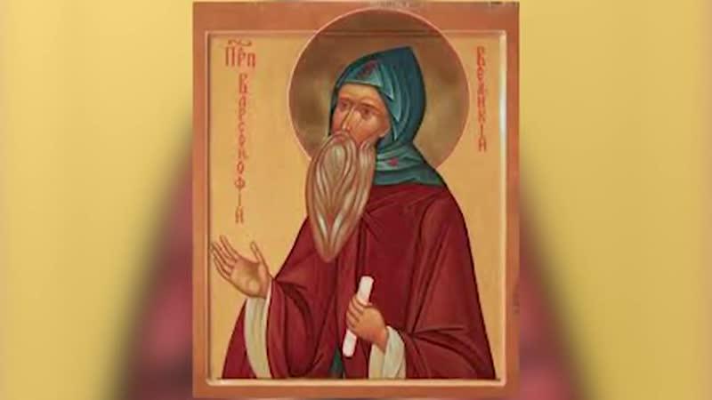 19 февраля Прпп Варсонофий Великий и Иоанн Пророк VI Семиречье 2020