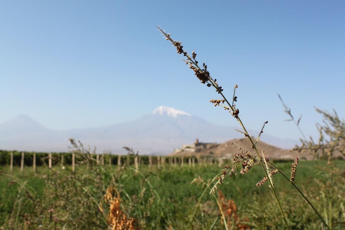 Армения: 10 дней в сентябре