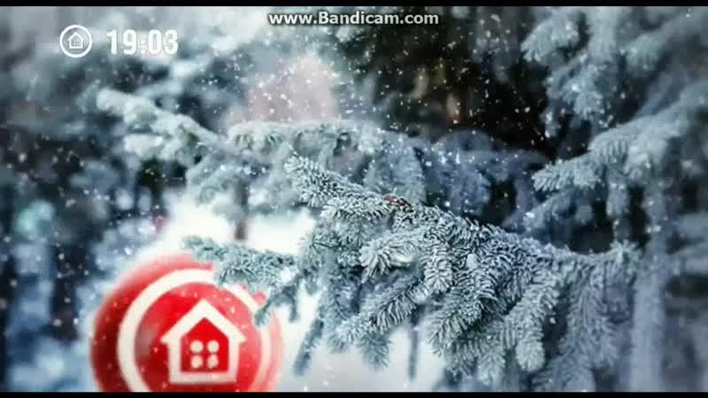 Заставка (Наш дом, зима 2017-2018) Ёлка