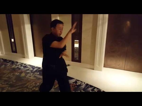 Master Zhao Chuan Hui- Song Style Xingyi Quan