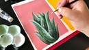Gouache Painting an Aloe Vera Plant by Philip Boelter