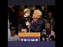 Trump trolleyen velet