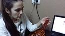 Бусы из янтаря - медовые янтарные бусы, цена 10 гривен за грамм