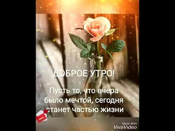 💞 Доброе утро!👋 Светлого дня!☺