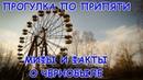 Прогулка по Припяти. Мифы и легенды о Чернобыле