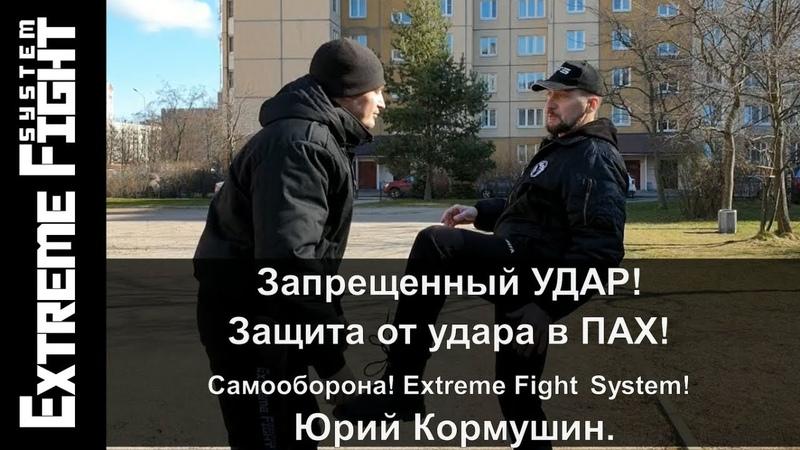 Запрещенный УДАР Защита от удара в ПАХ Самооборона Extreme Fight System Юрий Кормушин