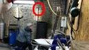 Синичка везунчик Залетела в печную трубу в гараже Спасение