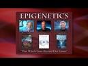 Mark passio erklärt die epigenetik