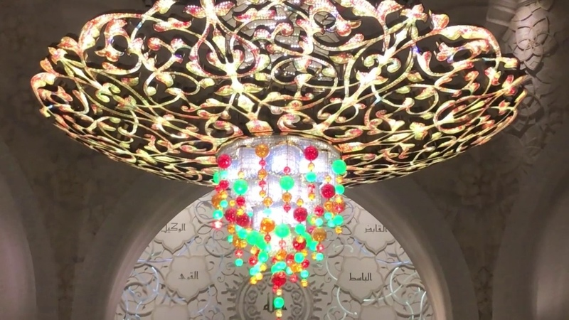 Перелётные птицы Выпуск 17 Абу Даби