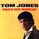 Tom Jones - Little by Little