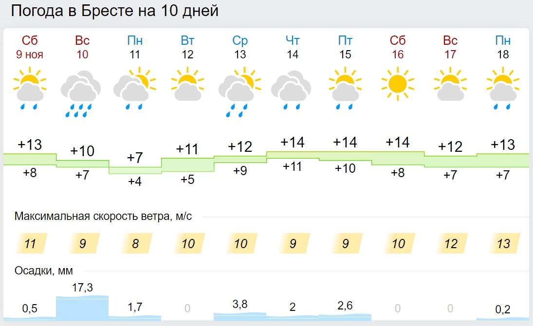 Прогноз погоды на 10 ноября: дожди и до +16°С