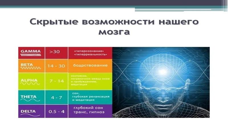 Режимы работы головного мозга Влияние Гамма Бета Альфа Тета волн на мозг человека