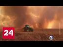 В Бразилии лесные пожары леса на берегах Амазонки - Россия 24