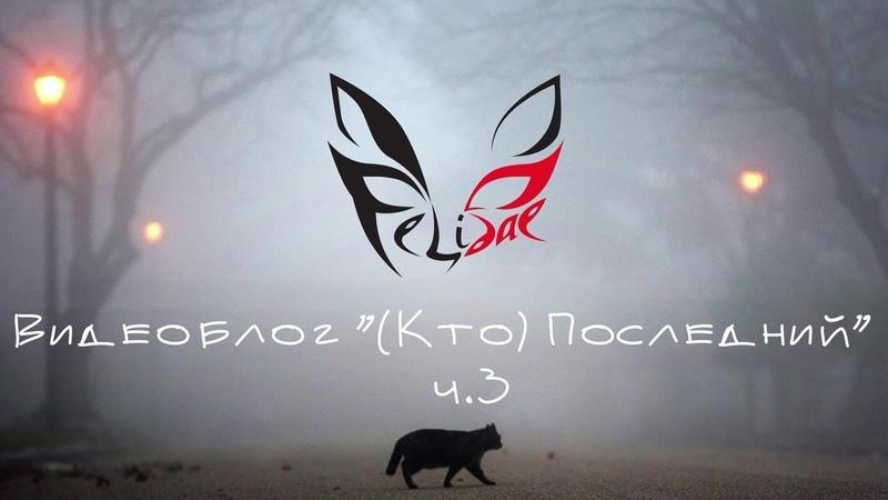 Felidae Видеоблог Кто Последний ч 3