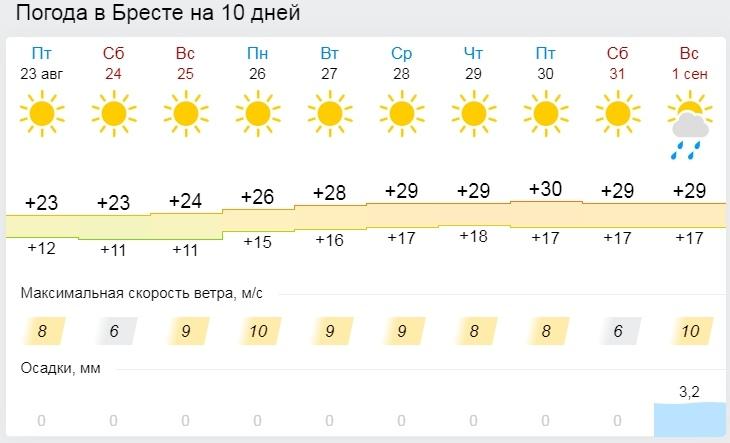Настоящее лето. Все о погоде в Бресте на эти выходные