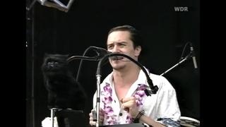 Mr. Bungle - None of Them Knew They Were Robots, Bizarre Festival (AUG 19 2000)