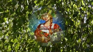 Серж Лащёв  Я в весеннем лесу   сл и муз Е Агронович   Видео В Надеждина  15 08 2019
